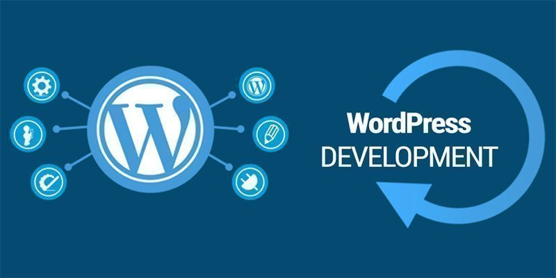 Best WordPress Development and Design in Egypt 2 CodeShip